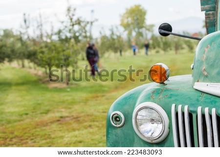 U-pick apple farm on one day in Autumn. - stock photo