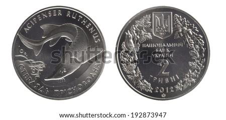 Ukraine 2 hryvnia commemorative, Acipenser ruthenus - stock photo