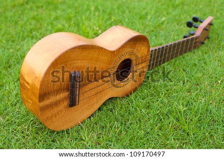 Ukulele on lawn background - stock photo