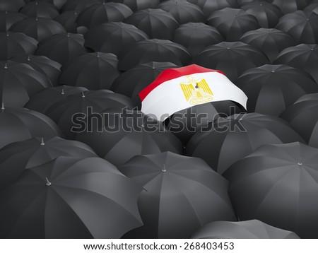 Umbrella with flag of egypt over black umbrellas - stock photo