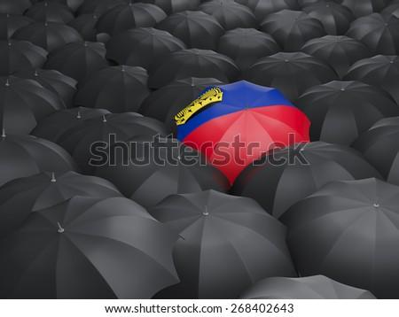 Umbrella with flag of liechtenstein over black umbrellas - stock photo