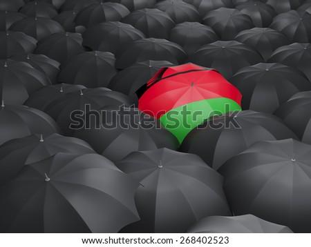 Umbrella with flag of malawi over black umbrellas - stock photo