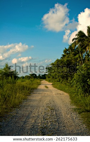 Un-paved country road  - stock photo