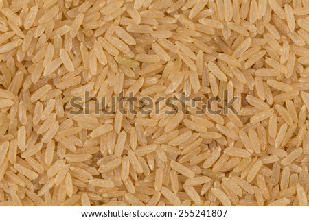 Uncooked Brown rice background close up image - stock photo