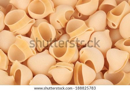 Uncooked dry delicious italian pasta lumaconi close-up. - stock photo