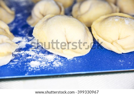 Uncooked homemade pelmeni lies on a flour
