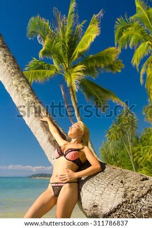 Under Palm Idyllic Holiday  - stock photo