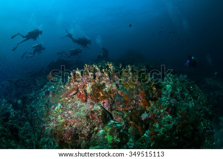 Underwater Blue Sea and scuba diver near dive site  - stock photo