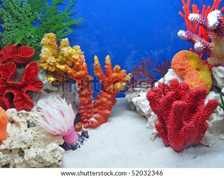 underwater colorful coral stones diversity. new color tropical concept - stock photo