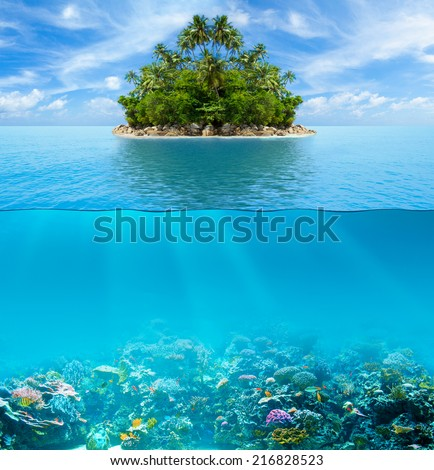 Underwater coral reef seabed and water surface with tropical island - stock photo