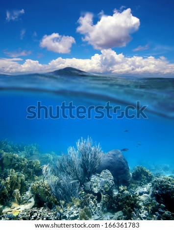 Underwater coral reef with water surface and cloudy blue sky horizon split by waterline - stock photo