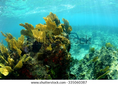 Underwater image of coral reef with a man spearfishing with a speargun - stock photo