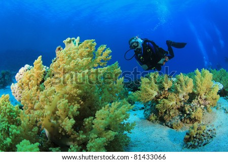 Underwater image of Diver on Scuba swimming over Coral Reef in clear blue sea - stock photo