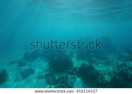 Underwater landscape, ocean floor with corals and sunlight through water surface, natural scene, Pacific ocean, French Polynesia - stock photo