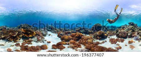 Underwater panorama of the young lady snorkeling over vivid coral reef in tropical sea. Bali Barat National Park, Indonesia - stock photo