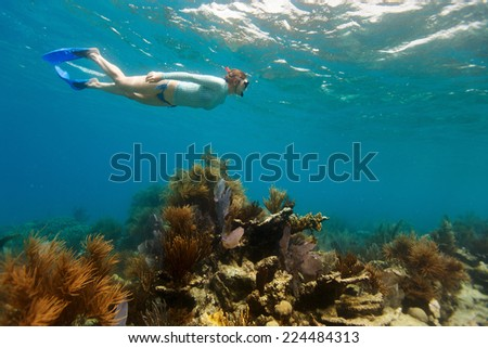 Underwater photo of woman snorkeling in a clear tropical water at coral reef - stock photo
