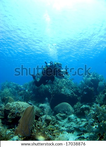 Underwater Photographer shooting a Cayman Island Reef - stock photo