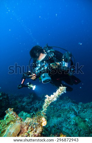 underwater photography photographer diver scuba diving bunaken indonesia reef ocean - stock photo