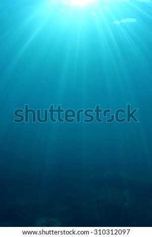 Underwater Sea Ocean - stock photo