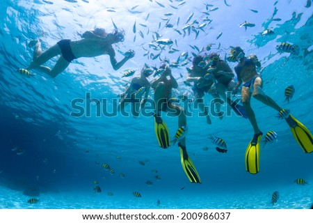 Underwater shot of the group of friends snorkeling in clear sea with fish - stock photo