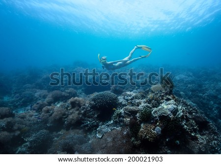 Underwater shot of the young lady moving on depth over coral reef - stock photo
