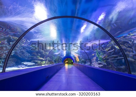 Underwater tunnel - stock photo