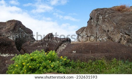 Unfinished moai at the top of Rano Raraku volcano, inside the crater. - stock photo
