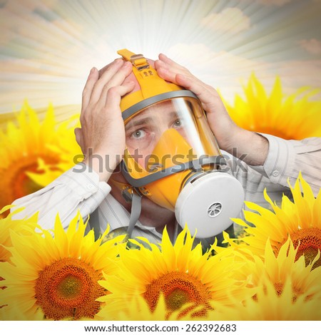 Unhappy man in protection mask in a sunflower field. Allergy concept. - stock photo