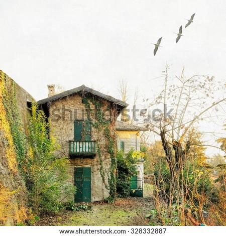 Uninhabited old farmhouse - stock photo