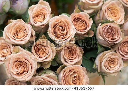 Unique wedding flowers. Colorful roses. - stock photo