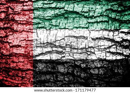 United Arab Emirates Flag painted on tree bark background  - stock photo