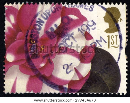 UNITED KINGDOM - CIRCA 1997: A stamp printed in United Kingdom shows 19th Century Flower Painting, Camellia Japonica (Alfred Chandler), circa 1997 - stock photo