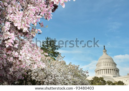 United States Capitol building in spring, Washington DC - stock photo