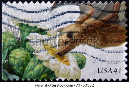 UNITED STATES - CIRCA 2007: stamp printed in USA shows Saguaro lesser long-nosed bat, circa 2011 - stock photo