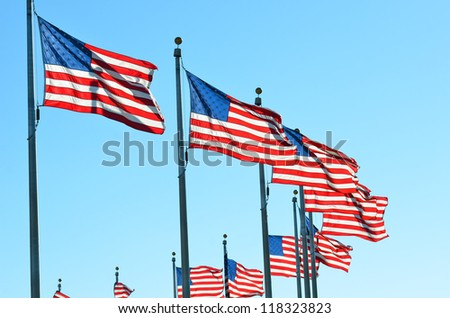 United States flags around the Washington Monument in Washington DC - stock photo