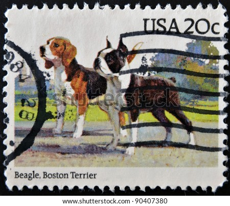 UNITED STATES OF AMERICA - CIRCA 1984: A stamp printed in USA shows beagle and Boston terrier, circa 1984 - stock photo