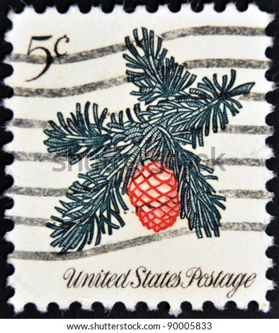 UNITED STATES OF AMERICA - CIRCA 1964: A stamp printed in USA shows flower of pine , circa 1964 - stock photo