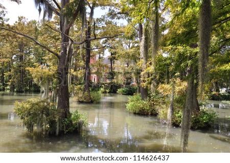 University Of Louisiana Bayou 005 - stock photo