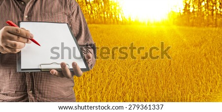 Unrecognizable Businessman hold empty list of paper red pen. Copy space for inscription Experienced agronomist examining wheat grain in field Takes readings - stock photo