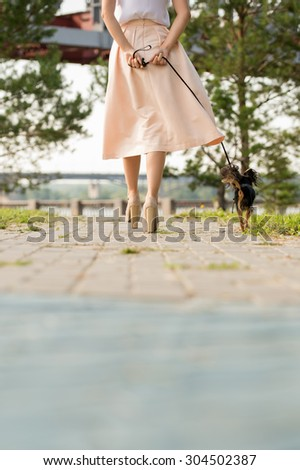Unrecognizable lady walking with her dog on lead in summer park. View from behind - stock photo