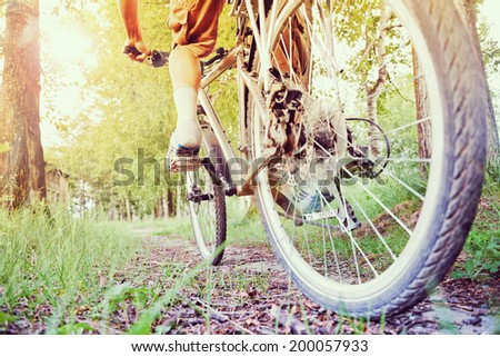 Unrecognizable man is riding on bicycle in sunny summer day - stock photo