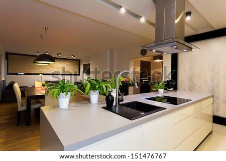 Urban apartment - white kitchen counter with plants - stock photo
