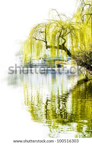 Urban tree reflection in canal - stock photo