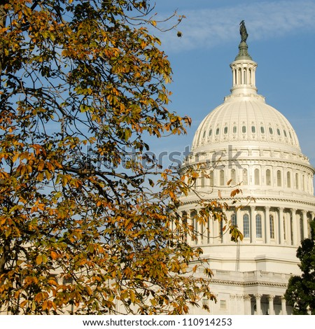 US Capitol Building dome among autumn tree branches - stock photo