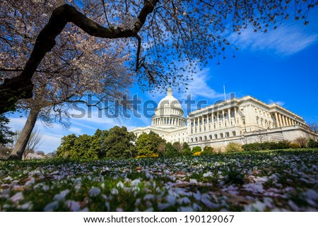 US Capitol Building in Spring - Washington DC United States - stock photo
