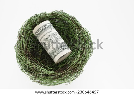 US currency in birds nest - stock photo