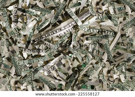 US currency in shreds - stock photo