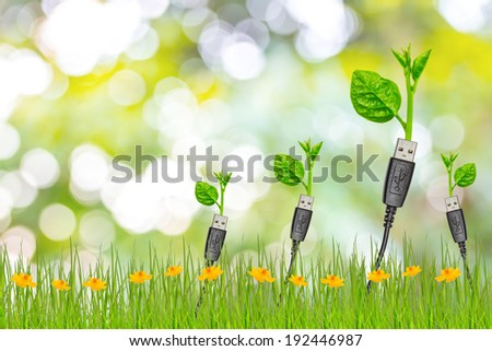 usb cable with a small plant - stock photo