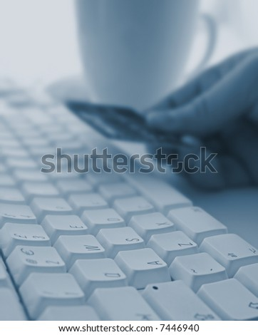 Using a Credit Card Online - stock photo