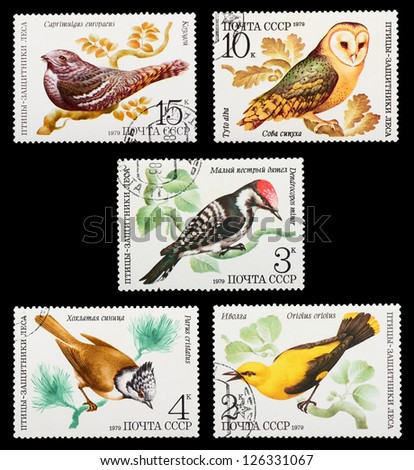 USSR- CIRCA 1979: A set of postage stamps printed in USSR shows birds of forest defenders, series, circa 1979 - stock photo